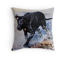 Sam at the River Throw Pillow