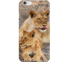 Lioness Cub iPhone Case/Skin