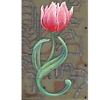 tech tulip by thomas jacobson 2008 Photographic Print