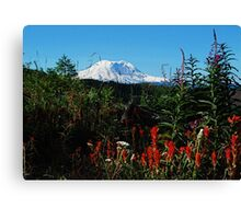Wildflowers & Mt. Rainier Canvas Print