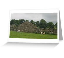 Rock Walls and Sheep in Swaledale, Yorkshire Greeting Card