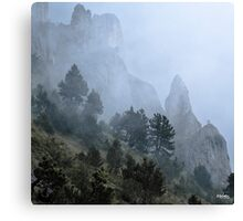 Pines, mist and cliff Canvas Print