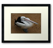 """"""" If I crouch down a little bit more, do you think I look like a duck?"""" Framed Print"""