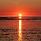 """Eighty Mile Beach"" by Sue  Fellows"