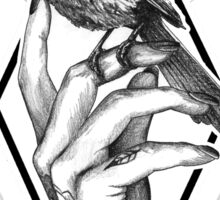 Bird In The Tattooed Hand (Colour) Sticker