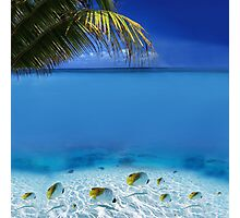 Post Card from Tahiti Photographic Print