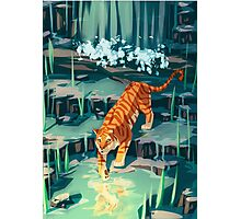 Golden Tiger Photographic Print