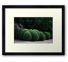Spherical Topiary Framed Print