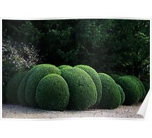 Spherical Topiary Poster