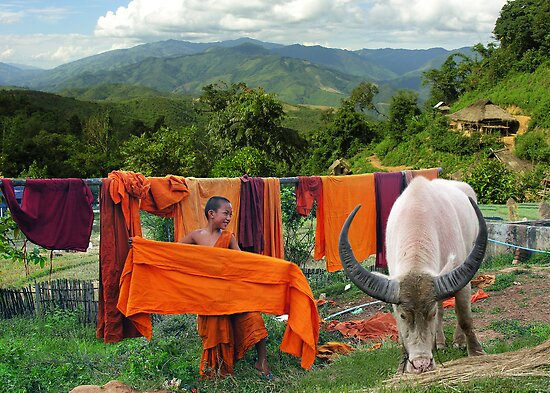 LAUNDRY - BURMA by Michael Sheridan