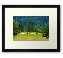 OnePhotoPerDay Series: 223 by L. Framed Print