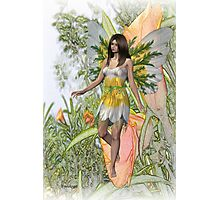 Lily the flower fae Photographic Print