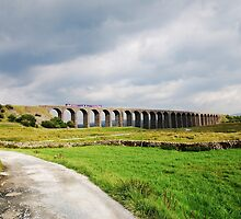 Train over the viaduct by Annette Brown