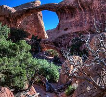 """Double """"O"""" Arch by Terence Russell"""