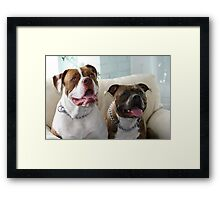 Can we have our snack now? Framed Print