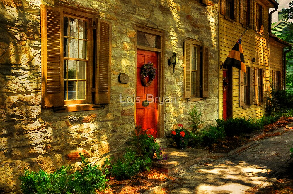 Windows and Doors by Lois  Bryan