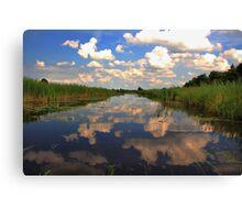 Natures Mirror Canvas Print