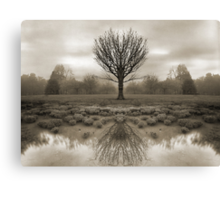 mirrored reality Canvas Print
