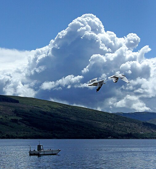 Flight Over Loch Fyne by OpalFire