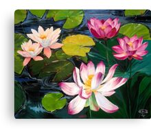 Lotuses and Lilies Canvas Print