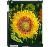 Small Sun For My Dear Grandson Kacperek iPad Case/Skin
