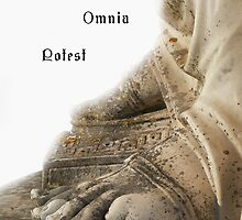 Curia Omnia Potest by terezadelpilar~ art & architecture