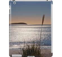 Abersoch bay with grasses iPad Case/Skin