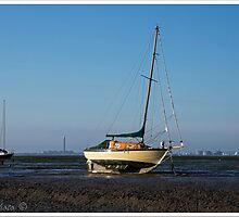Leigh-on-Sea in the morning light by DonMc