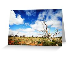 Rock Trees, Outback South Australia Greeting Card
