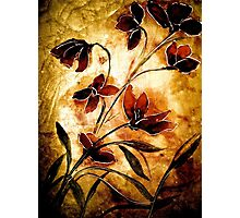 The Poppy Journals...Fabric.... Photographic Print