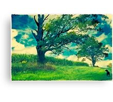 Dog Days Canvas Print