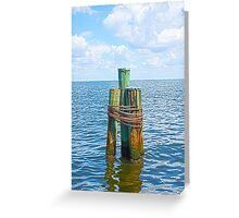 Three Friends in the Sea Greeting Card