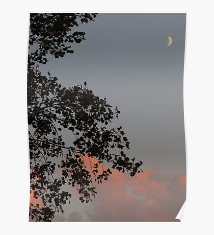 crescent moon silhouette Poster