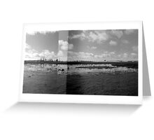 Wetlands - Dangars Lagoon, Northern Tablelands, NSW, Australia Greeting Card