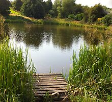 MIlton Pond, Near Barnsley, South Yorkshire by Andy Smith