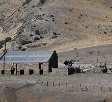 shed at rapid bay s.a. by belindacooper8