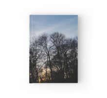 Lurking Series Hardcover Journal