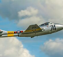 DH115 Vampire T.11 WZ507/74 G-VTII by Colin Smedley