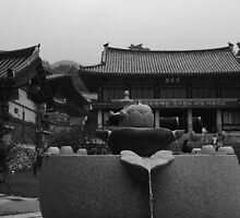 Holy Water at Donghwa Temple (Donghwasa) in Korea by janekeeler