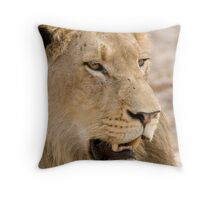 Juvenile Male Lion Throw Pillow