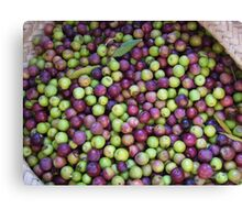 Olives Canvas Print