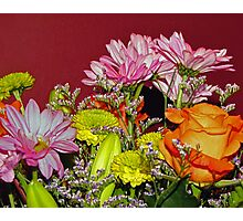 The Many Blooms Photographic Print
