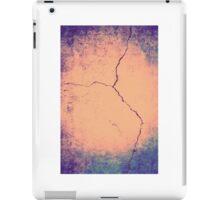 #30  iPad Case/Skin
