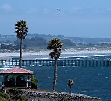 Pismo Beach California by DBArt