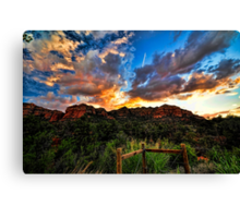 View From The Fence  Canvas Print