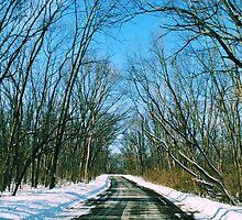 Road Less Traveled  by laruecherie