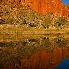 Finke River Reflection by mspfoto