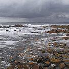 shoreline at Greens Beach by gaylene