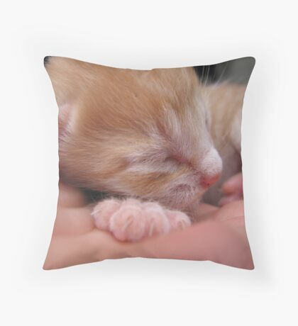 6 days old Throw Pillow