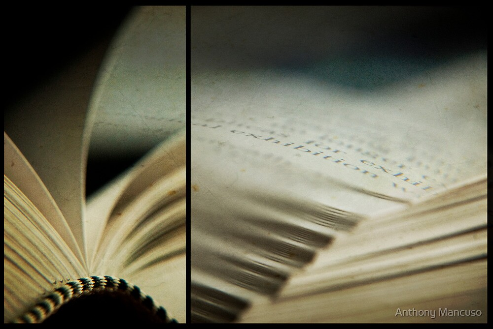 the book club by Anthony Mancuso
